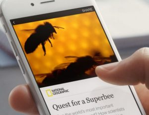 What Are Facebook Instant Articles?