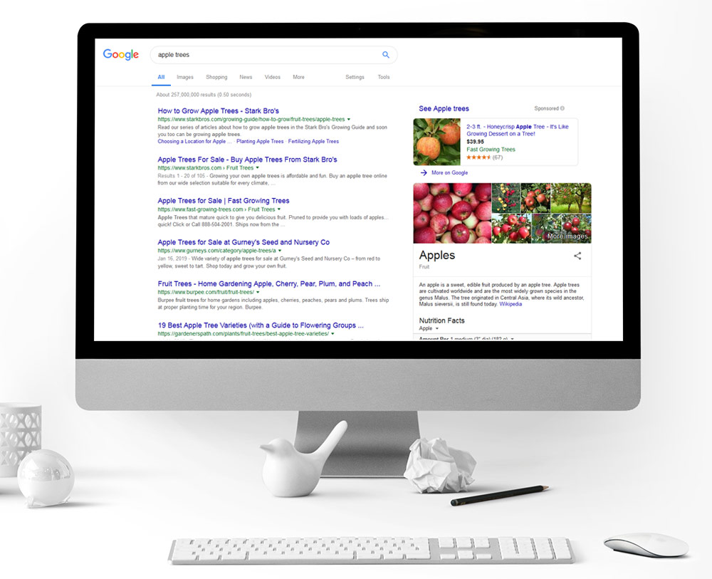 SEO SERP Results